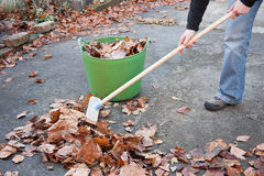 Working Hands Sweeping Autumn Leaves Stock Images