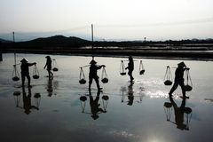 Working hard on the salt farming. Daily life in Ninh Diem Salt Farming Royalty Free Stock Photography