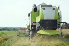 Working harvesting combine in field Royalty Free Stock Photos