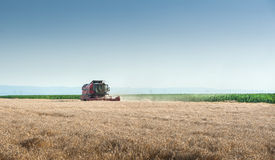 Working Harvesting Combine Royalty Free Stock Photos