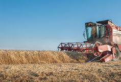 Working Harvesting Combine Stock Photo