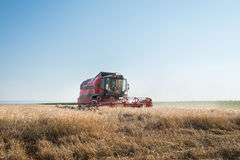 Working Harvesting Combine Stock Image