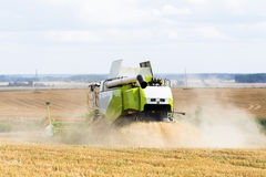 Working Harvesting Combine in the Field of Wheat.  stock photo