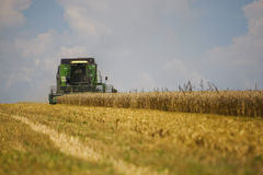 Working harvesting combine in the field of wheat with selective focus Stock Photo