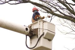 Working High. A tree trimmer in a high lift trimming a tree for the electric company royalty free stock photos