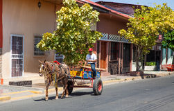 Working Horse & Cart Royalty Free Stock Images
