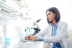 Working in lab Stock Photo