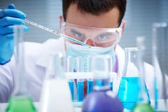 Working in the laboratory Royalty Free Stock Images