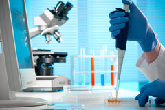 Working at the laboratory Royalty Free Stock Photography