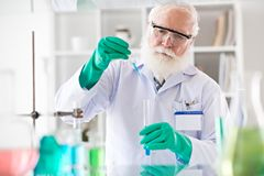 Working in laboratory Stock Photos