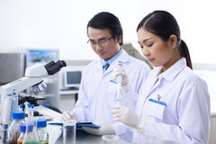 Working in laboratory Royalty Free Stock Image