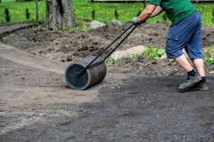 Working with lawn roller. Gardener uses lawn roller to make ground plain Stock Photo