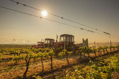 Working machines on the grape field Royalty Free Stock Photos