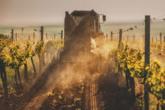 Working machines on the grape field nature Royalty Free Stock Image
