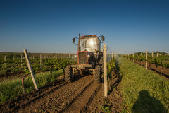 Working machines on the grape field nature Royalty Free Stock Photography