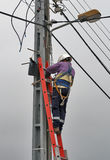Working man. On high ladder Stock Photography