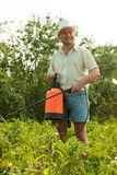 Working man with garden spray Stock Photo