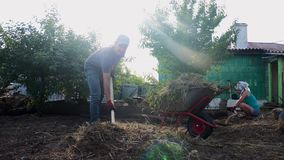 Working man and woman gardening clean the grass. Work in the garden agriculture. farmer lifestyle loads trash and grass stock video
