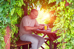 Working man in wooden arbor. Mature man working on tablet PC sitting inside wood handcrafted arbor surrounded with green curling tree leafs with backlight warm Stock Image