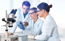 Female and male scientists in glasses working with royalty free stock photos