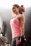 Working on my arms at the gym Stock Images
