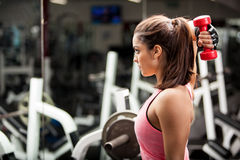 Working on my triceps. Gorgeous young woman using dumbbells to work on her triceps. Lots of copy space stock images