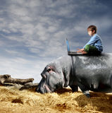 Working in nature Royalty Free Stock Photo