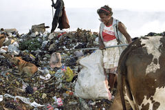 Working Nicaraguan woman, garbage dump, Managua. Nicaragua, capital, city Managua an older woman is working among the garbage in landfill Acahualinca in Managua Royalty Free Stock Image