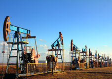 Working oil pumps in row. Many working oil pumps in row under blue sky Royalty Free Stock Photo