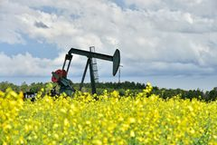 Working Oil Well Pump Jack royalty free stock photo