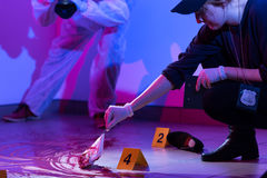 Free Working On A Murder Scene Royalty Free Stock Image - 53170626