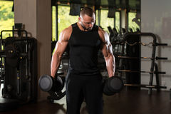Working Out Biceps With Dumbbells. Bodybuilder Working Out Biceps In The Gym - Dumbbell Concentration Curls Royalty Free Stock Photos