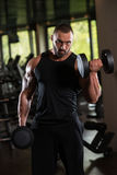 Working Out Biceps With Dumbbells. Bodybuilder Working Out Biceps In The Gym - Dumbbell Concentration Curls Royalty Free Stock Photo