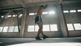 Working out with Rope. Tall well-built boxer skipping rope, wearing black bandage set, sport shorts and trainers, working out in large light room stock video