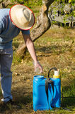Working with pesticide. Agricultural worker filling a sprayer with pesticide royalty free stock image