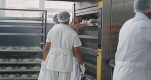 Working process in a big bakery manufacturing two professional workers load the raw bread on the oven other worker in a. White uniform transported the fresh stock footage