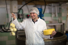 Working on  production of cheese at  dairy , with cheeses Stock Photos