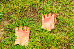 Working rubber gloves in the grass. Horizontal photo, photo is usable on picture post card, calendar, gardening, magazine Stock Images