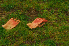Working rubber gloves in the grass Stock Image