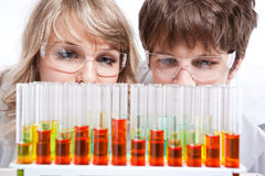 Working scientists Royalty Free Stock Photos
