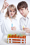 Working scientists royalty free stock photography