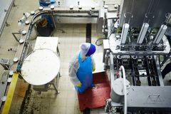 Working by seafood production line Stock Photo