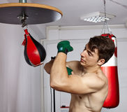 Working with the speed punchbag Royalty Free Stock Photography
