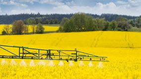 Agricultural sprayer detail. Flowering rapeseed field. Brassica napus royalty free stock photos