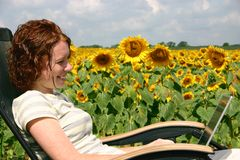 Working by the Sunflowers Royalty Free Stock Photo