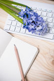 Working table with flowers Royalty Free Stock Photo