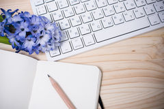 Working table with flowers Royalty Free Stock Photography