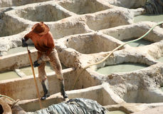 Working in the Tanneries of Fes Royalty Free Stock Photos