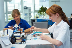 Working together in a lab Stock Image
