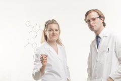 Working together in Science Royalty Free Stock Photography